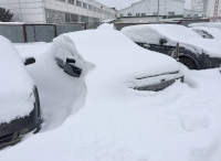 Аномальный февраль или .... ?