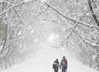 Снег, нежно землю покрывая...